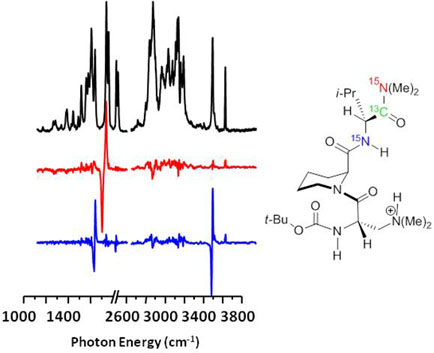 difference spectra revealing positions of local oscillators by site-selective isotopic substitution.